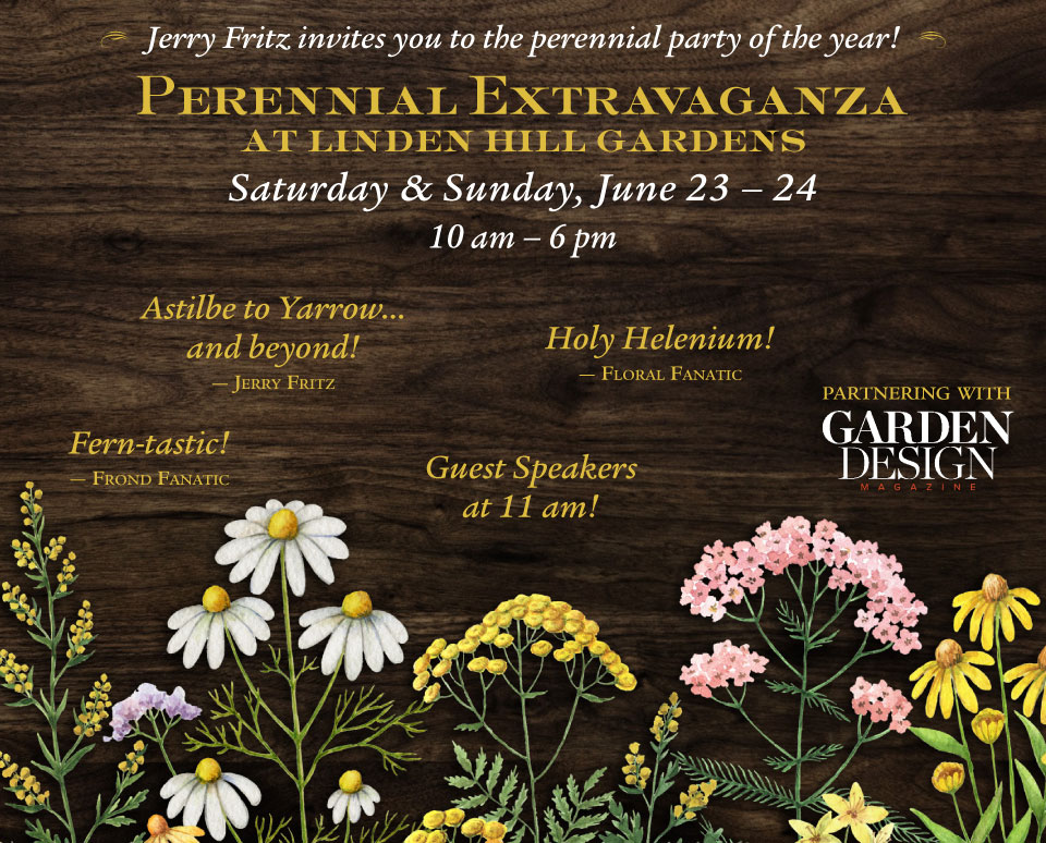 Jerry Fritz invites you to the perennial party of the year! Perennial Extravaganza at Linden Hill Gardens, Saturday and Sunday, June 23 and 24, 2018 from 10am - 6pm