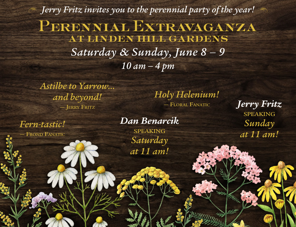 Jerry Fritz invites you to the perennial party of the year! Perennial Extravaganza at Linden Hill Gardens, Saturday and Sunday, June 8 and 9, 2019 from 10am - 4pm
